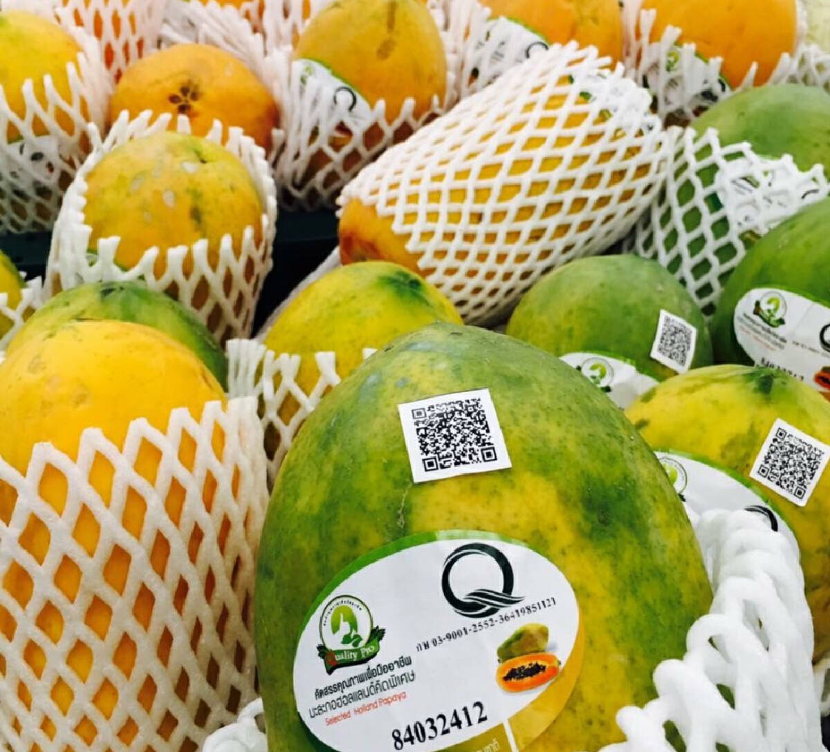 Gov't promotes new 'Q' mark assuring quality food products