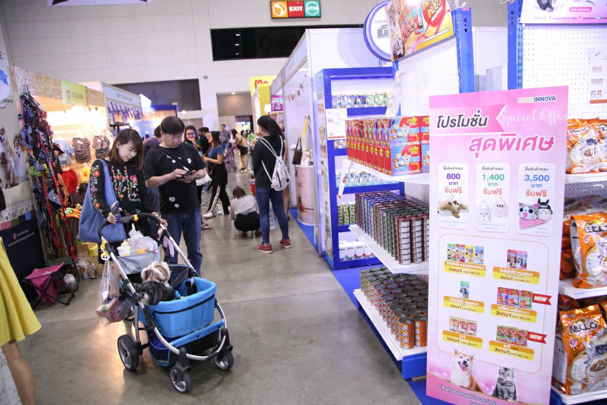 Cat café zone, pet fashion shows among features at Bangkok pet show