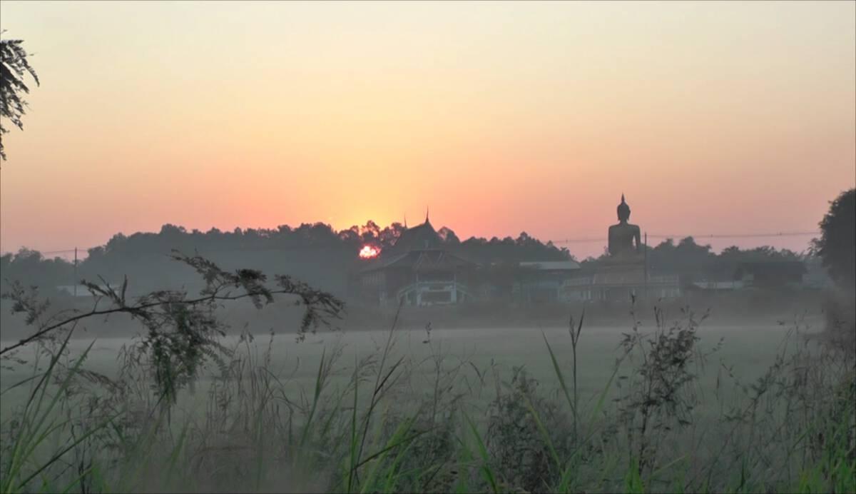 Mist blanket rice fields in Pichit
