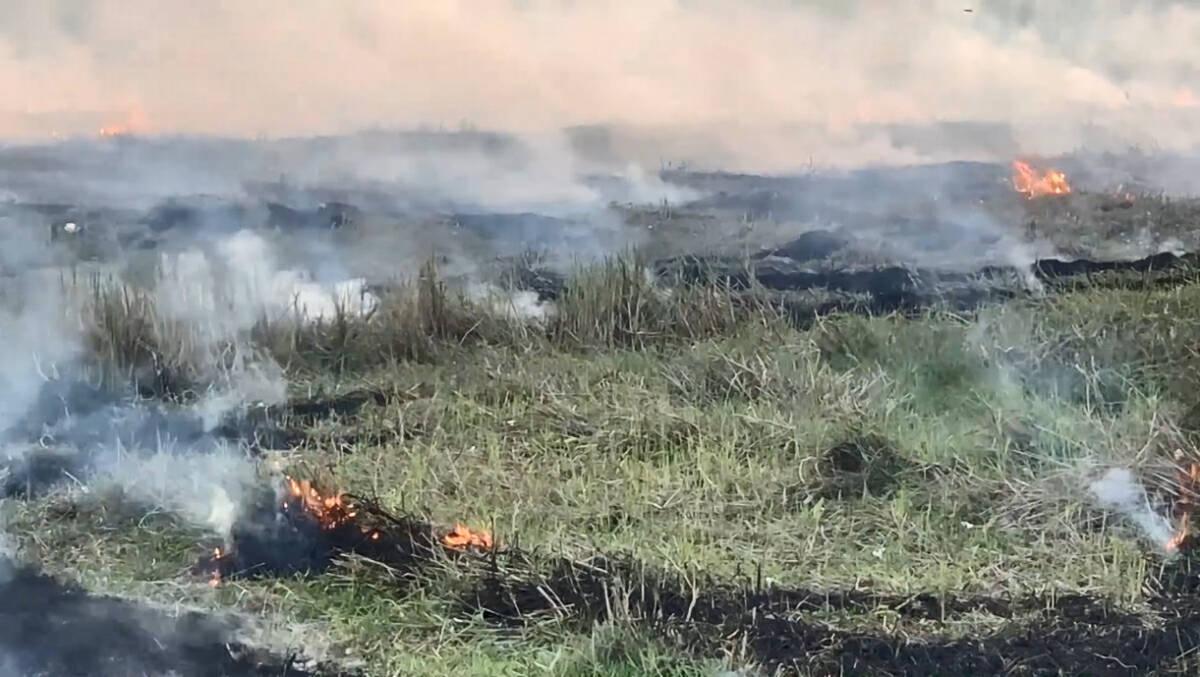 Farmers burn straw fields, leaving smoke-filled sky in Sisaket district