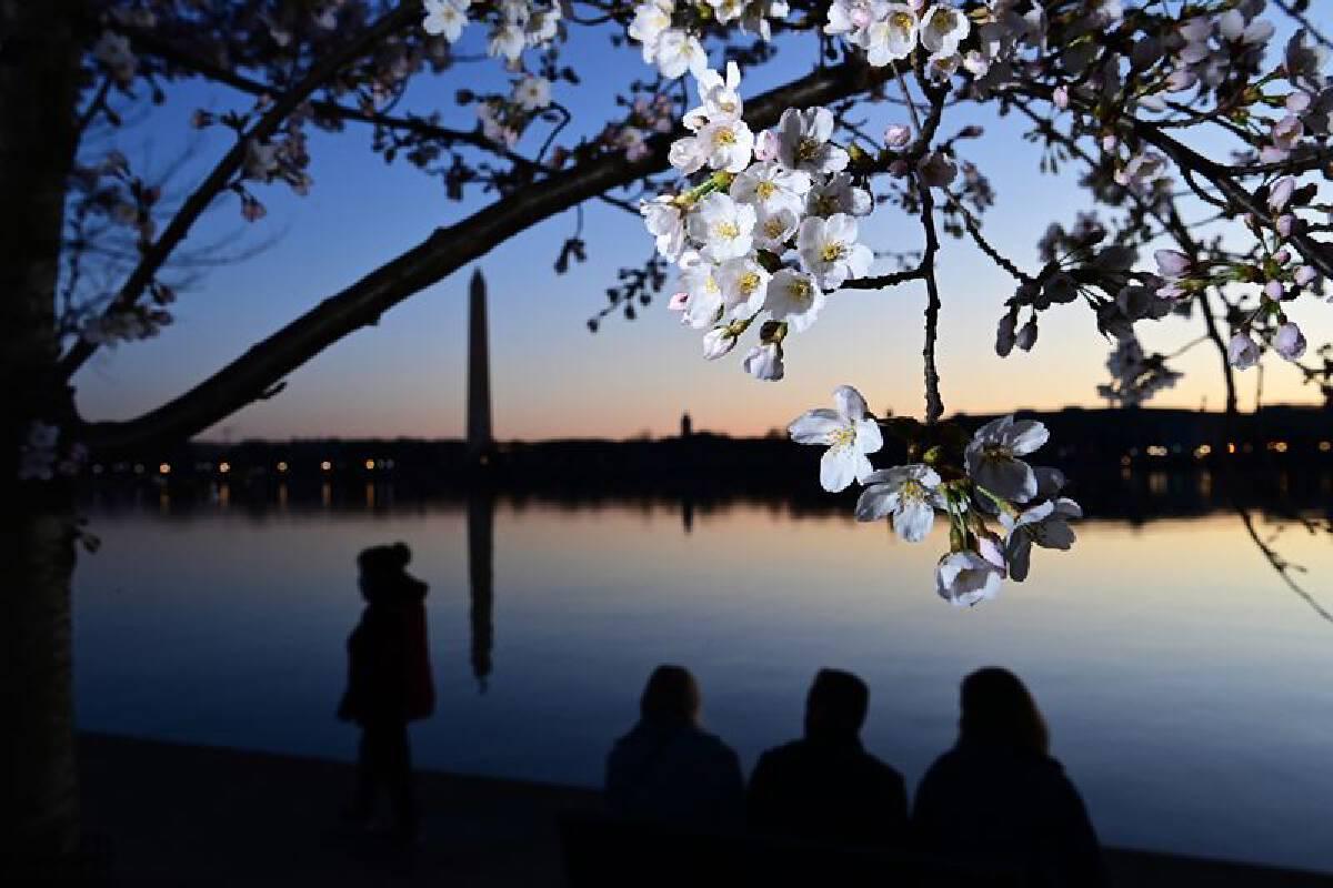 MUST CREDIT: Washington Post photo by Matt McClain