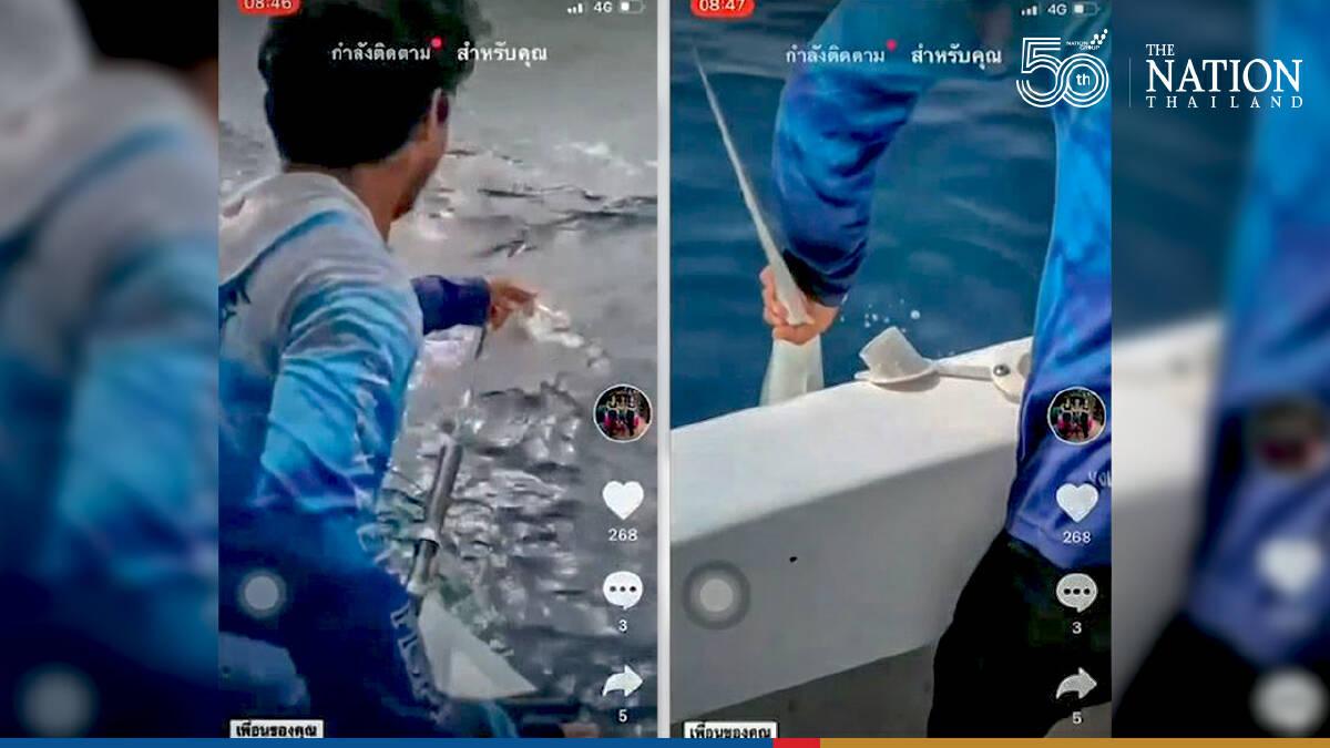 Two 'shark killers' nabbed in Krabi