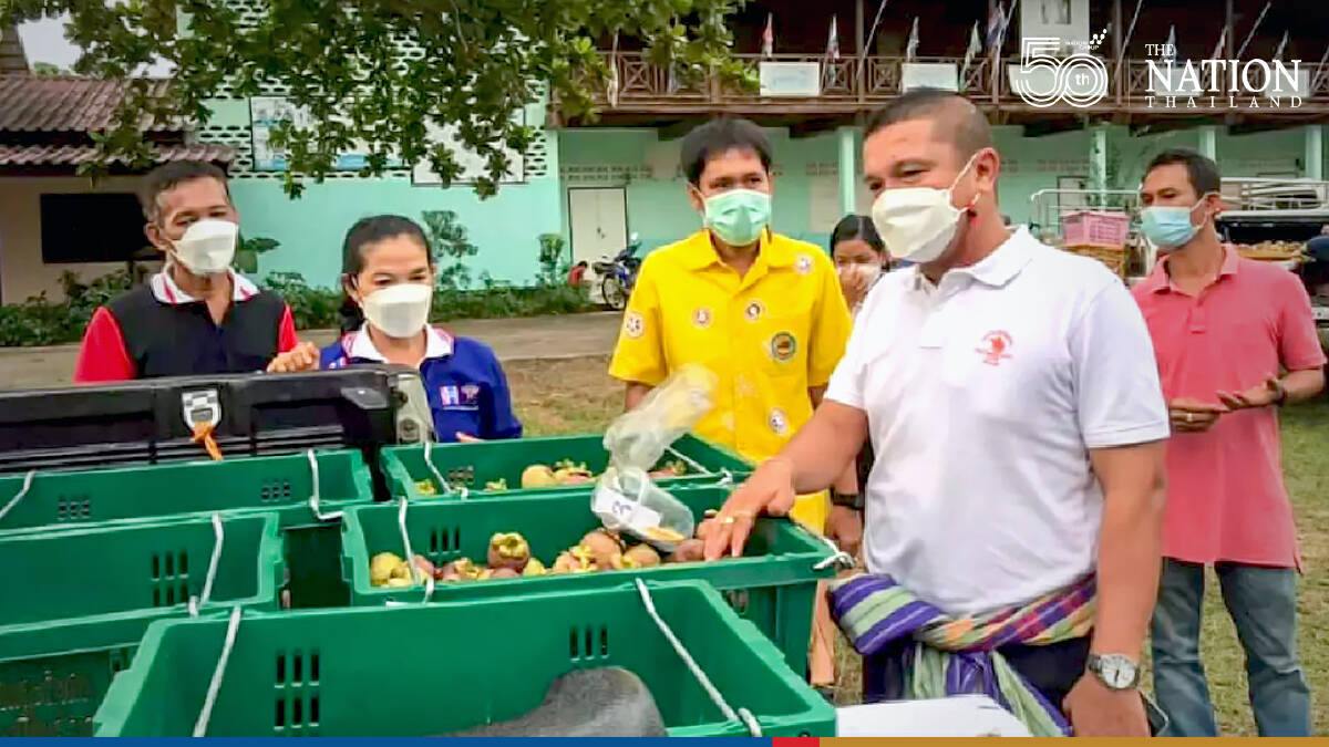 Government intervention sought to deal with mangosteen oversupply problem