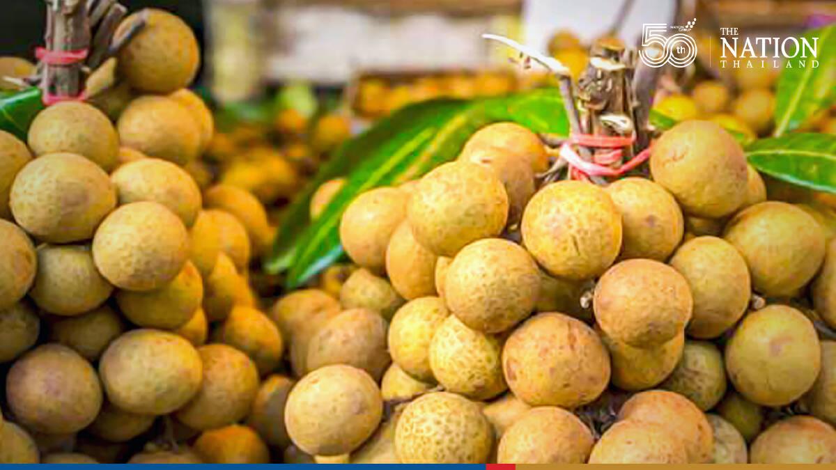 China okays longan shipments from 56 exporters