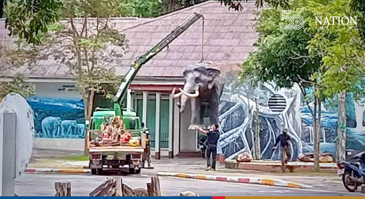 Khao Yai visitor centre's guardian, Plai Ning, returns to its post