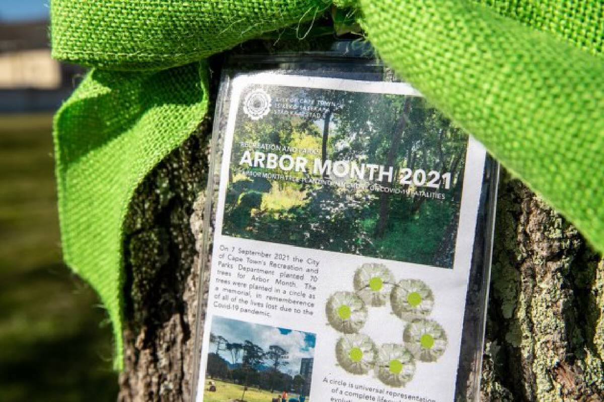 Photo taken on Sept. 8, 2021 shows a tag about trees planted at a memorial garden dedicated to those who lost their lives due to the COVID-19 pandemic in Cape Town, South Africa.