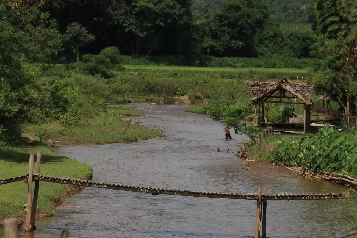 Unesco declares Chiang Mai's Doi Chiang Dao as new biosphere reserve