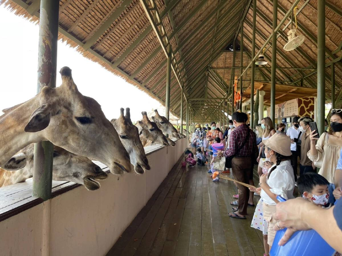 Safari World reopens under Covid-19 restrictions