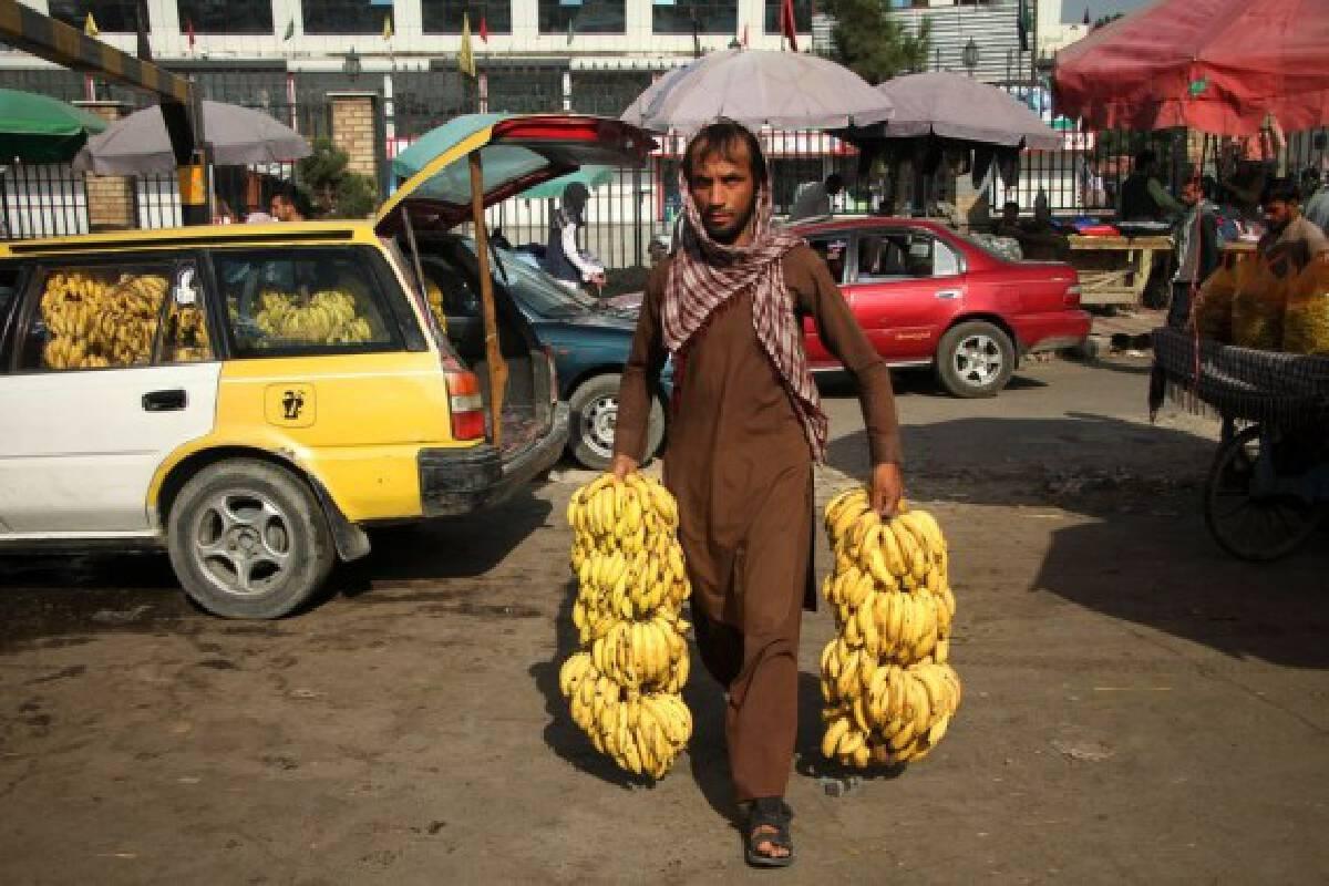 An Afghan man delivers bananas in Kabul, capital of Afghanistan, Sept. 15, 2021. (Photo by Saifurahman Safi/Xinhua)