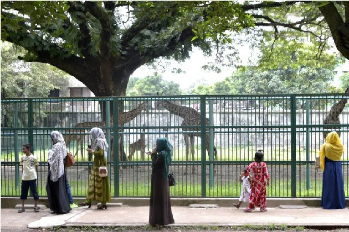 People visit the Bangladesh National Zoo in Dhaka, capital of Bangladesh, on Oct. 3, 2021, the eve of World Animal Day. (Xinhua)