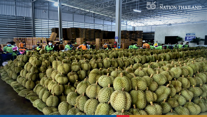 Thai durian rules global fruit market thanks to tariff waivers: DTN